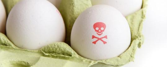 (Italiano) Nuovo richiamo di uova contaminate da fipronil